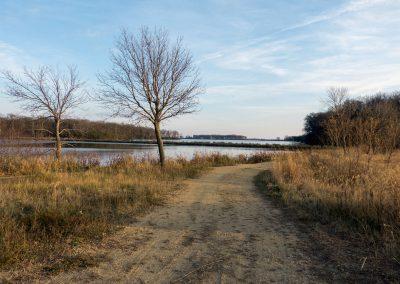 Ida_Lake_3_web