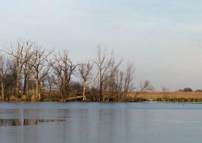 Ida_Lake_Pano_4_web